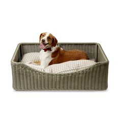 Country Living Yappy Hour Dog Bed in Grass  This bed is the perfect place for your pet to lay to enjoy his or her Yappy Hour!  The frame is made using aluminum – which will not rust!  The wicker is all weather wicker made of PE (polyethylene) resin.  It is designed to look like natural wicker, but is durable and resistant to outdoor elements. #countryliving