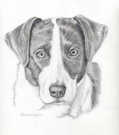Custom Pet portrait-Sketch of my dog Dog by PatouPetPortraits