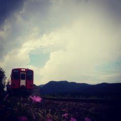 Photo by komaru001 • Instagram