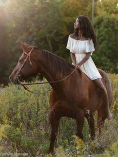 dark horse reed ralph