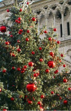 Christmas in Paris | cynthia reccord