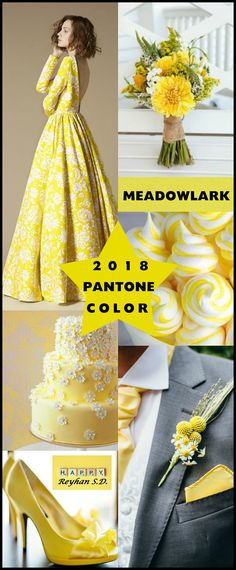 '' Meadowlark- 2018 Pantone Color '' by Reyhan S.D.