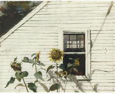 "'Andrew Wyeth SUNFLOWERS 18.50"" x 23.75"" (46.99cm x 60.33cm) Created: 1982"