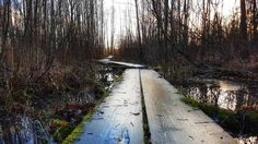 #europe #instafinland #järvenpää #travel #traveler #traveling #travelgram #finnishboy #landscape #landscape_lovers #finnish #travelphotography #instatravel #instapic #instagramers #visitfinland #f4f #cool #nature #hiking #follow #followme #sport #fashion
