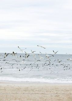 As free as the birds in the wind.