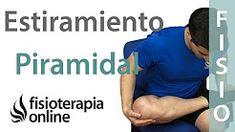ejercicios dolor de espalda - YouTube