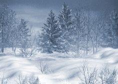 зима картинки и фото - Yahoo Image Search Results