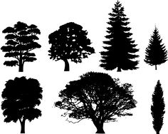 pine tree outline | Tree Silhouettes clip art - vector clip art online, royalty free ...