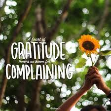 You'll be surprised how gratitude can change your whole perspective on life and give you reason upon reason to praise the Creator of it all. Here are 8 prayers of gratitude and thanksgiving to offer to the Lord today. Prayers Of Gratitude, Grateful Prayer, Thankful Heart, God Prayer, Daily Prayer, Sunday Quotes Funny, Positive Quotes For Work, Perspective On Life, All That Matters