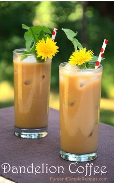 Dandelion Root Coffee   Pure and Simple Recipes