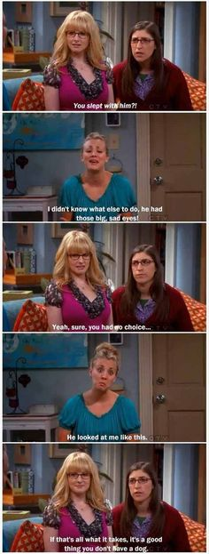 its a good thing you don't own a dog big bang theory funny quotes