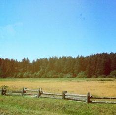 Road leading to Seven Oaks Ranch