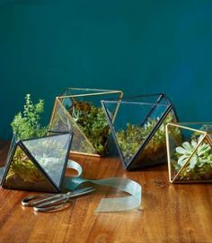 Geometric terrariums will liven up any dresser, countertop, or mantel — and they make beautiful dinner-party centerpieces, especially when grouped together in a cluster. Give her an empty one to grow in or get her started by planting a cactus or succulent for her to tend to.  ($29 and up, westelm.com)