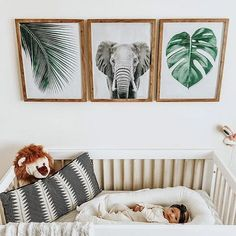 Inspiration from www.topshelfdecor.com Monstera Leaf and elephant. Perfect kids room!