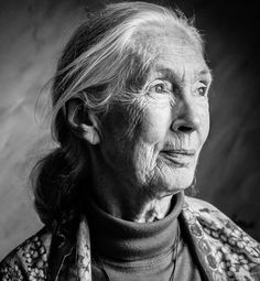 Jane Goodall -  British Primatologist, Ethologist, Anthropologist, & UN Messenger of Peace - By Alex Zeverijn