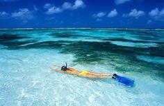 Learn to Snorkel - Bucket List Dream from TripBucket