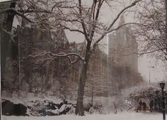 NYC. Manhattan. Upper West Side from snowy Central Park