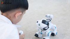 Intelligent Patrol Dog Intelligent Robot, Apple, Dogs, Apple Fruit, Pet Dogs, Doggies, Apples