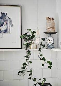 Cozy home with antique finds - via cocolapinedesign.com