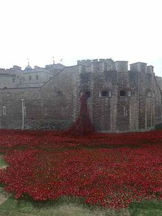 In 2014, 88, 246 ceramic poppies, one for each member of the British armed forces killed in the First World War, were placed in the moat at the Tower of London
