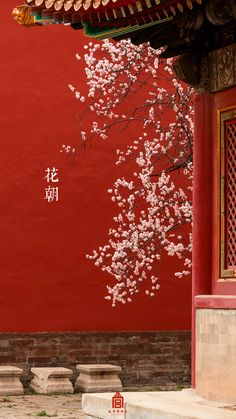 Japanese Aesthetic, Red Aesthetic, Aesthetic Photo, Chinese Style, Chinese Art, Chinese Background, Tibet Art, Chinese Wallpaper, Chinese Element