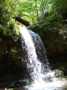 Grotto Falls Trail is a 2.6 mile out and back trail located near Gatlinburg, Tennessee that features a waterfall and is rated as moderate. The trail is primarily used for hiking & walking.
