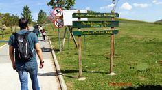 nanarinia: Κυριακή ημέρα για πάρκο! Outdoor Decor, Google