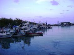 Hoşköy Balıkçı Barınağı