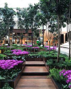 "4,848 curtidas, 67 comentários - Alex Hanazaki (@alexhanazaki) no Instagram: ""Pink #paisagismobyhanazaki #alexhanazaki #hanazaki #paisagismo #arquitetopaisagista #jardins #flor…"""