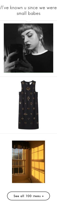 """""""/I've known u since we were small babes\"""" by cletus-fetus ❤ liked on Polyvore featuring dresses, vestidos, tops, платья, a line dress, sleeveless chiffon dress, beaded dress, embroidered shift dress, a line chiffon dress and jewelry"""