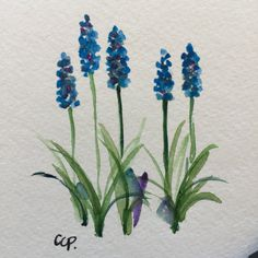 Grape Hyacinth Watercolor Card / Hand Painted Watercolor Card This card is an original watercolor not a print. I have painted this card on heavy 140# card stock. I have used ink and watercolor on this card. This card is 5x7 and blank inside. Comes with a matching envelope.