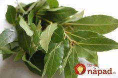 Túto rastlinu máme vo svojej kuchyni takmer všetci. Čo však skutočne dokáže a ako jej potenciál využiť naplno? Nordic Interior, Healing Herbs, Health Advice, Korn, Detox, Diy And Crafts, Plant Leaves, Gardening, Healthy