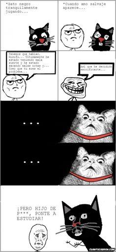 Claro, el recurso fácil, echarle la culpa al gato        Gracias a http://www.cuantocabron.com/   Si quieres leer la noticia completa visita: http://www.estoy-aburrido.com/claro-el-recurso-facil-echarle-la-culpa-al-gato/