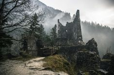 abandonedandawesome:  Abandoned Castle Ruins in the Forest by...