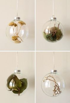 Dried flowers/herbs in a bulb. Cool kitchen idea.