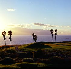 Golf Costa Adeje - who wouldn't want to play there? #golfcourse #golf #tenerife #golfholiday