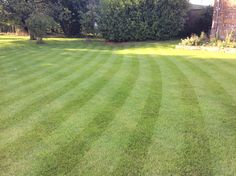 Lawncare treatments, Thenford, Oxfordshire Lawn Care, Golf Courses, Green, Lawn Maintenance