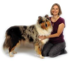 Helping breeders breed healthy dogs.