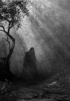 spirit halloween walnut creek