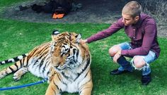 Justin Bieber Pets Leashed Tiger At Father's Engagement Party...Tigers don't belong at parties w/Justin Bieber