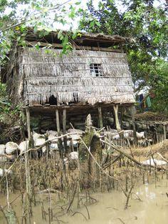 Living on the Mekong River