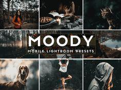 Lightroom preset Moody presets dark presets lightroom mobile  film presets outdoor presets photo editing