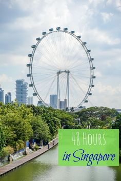 Singapore has so much to offer when it comes to family travel. Enjoy an amazing 48 hours in the city with these amazing things to do in Singapore with kids. | family travel | summer vacation