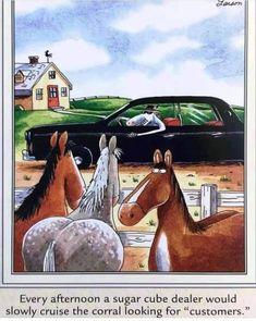 The Far Side, Funny Cartoons, Horses, Humor, Animals, Gary Larson, Animales, Animaux, Humour
