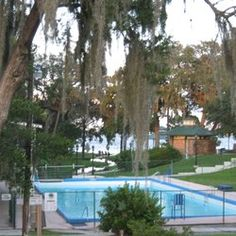 Chemical free swimming in the warm 78 degree mineral water public city pool during the summer months! Green Cove Springs, River Park, Mineral Water, Summer Months, During The Summer, Public, United States, Swimming, Warm