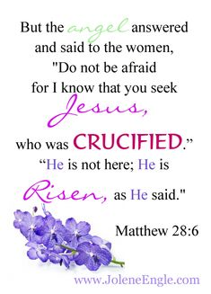 """But the angel answered and said to the women, """"Do not be afraid for I know that you seek Jesus, who was crucified. He is risen, as He said."""" - Matthew by kara Rise Quotes, He Is Risen Indeed, Resurrection Day, He Has Risen, Christ Is Risen, Lord And Savior, King Jesus, Love The Lord, Bible Scriptures"""