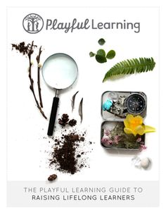 Free E-Book. The Playful Learning Guide to Raising Lifelong Learners is the first in a series of Playful Learning guides for parents and teachers. The goal is to provide creative, effective, and practical tips that will inspire joyful learning and meaningful memories for children and grown-ups alike.
