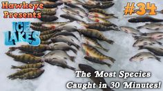 Ice Lakes - Ep. #34 - The Most Species Caught in 30 Minutes!