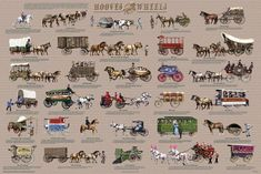 Hooves and Wheels - Horse-Drawn Vehicles Educational Poster Education Poster - 91 x 61 cm Poster Wall, Poster Prints, Horse Cart, History Posters, Horse Posters, Covered Wagon, History Classroom, Gypsy Wagon, Stem Science