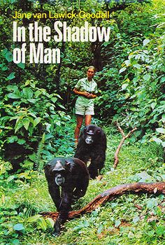 Jane Goodall's 1971 book, In the Shadow of Man, describes the lives of the Gombe chimpanzees.